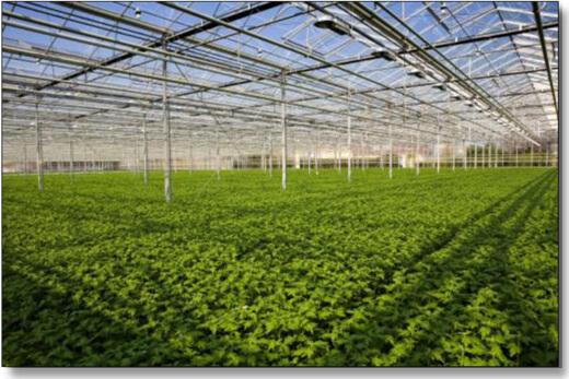 structured water for agriculture sprinkler system